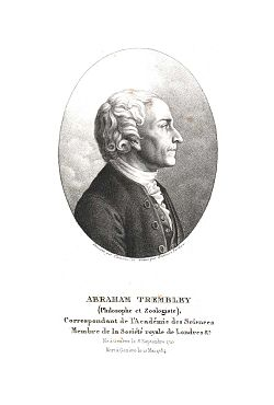 Abraham Trembley